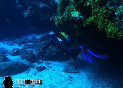 nurkowanie teneryfa w Las Eras