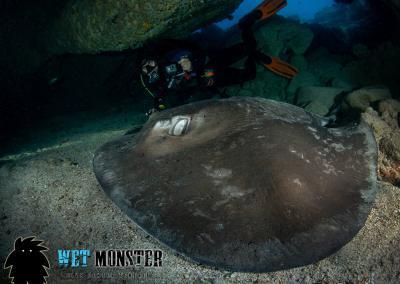 nurkowanie w jaskini Teneryfa